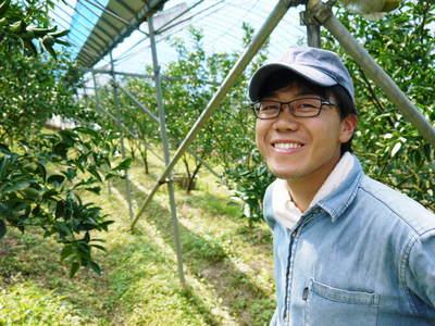 究極の柑橘「せとか」 着果から匠の摘果作業までの話_a0254656_1426324.jpg