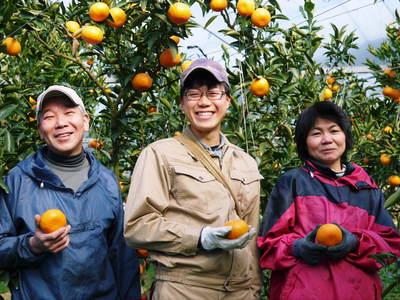 究極の柑橘「せとか」 着果から匠の摘果作業までの話_a0254656_1443658.jpg