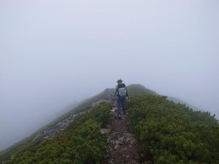 2016.7.16-17 後立山南部を行くちょっとした山旅_b0219778_12321039.jpg