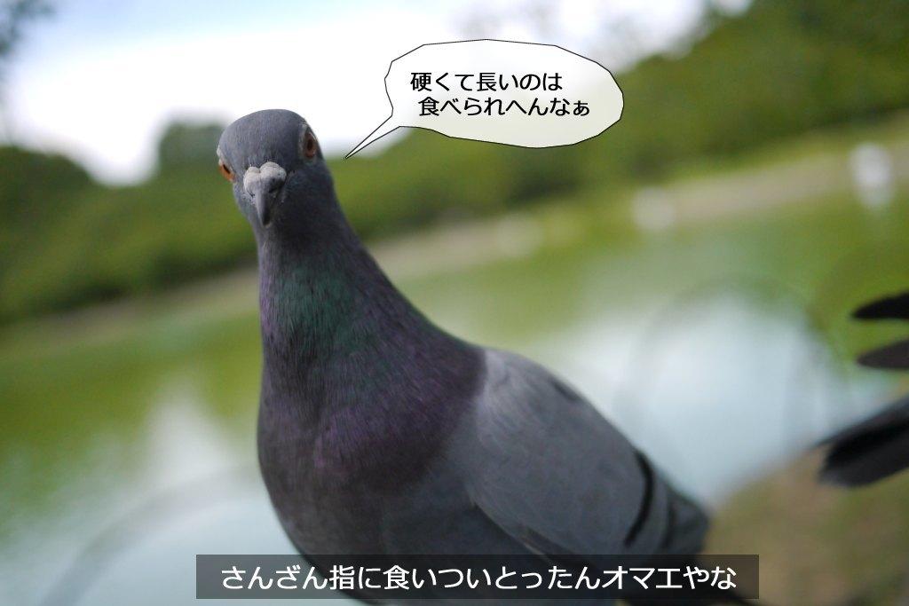 b0174191_16322579.jpg