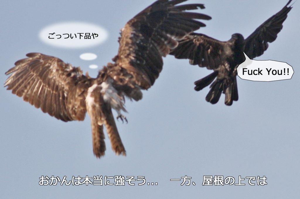 b0174191_23101719.jpg