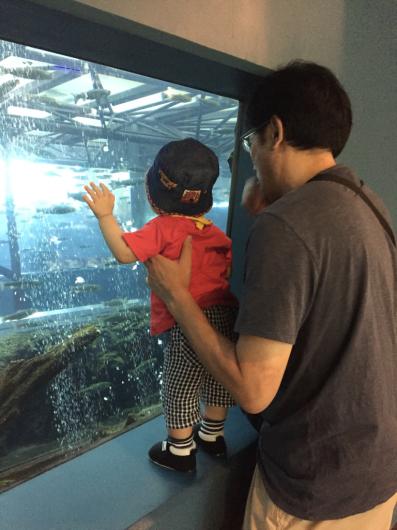 忍野森の中の水族館。_b0135325_20542770.jpg