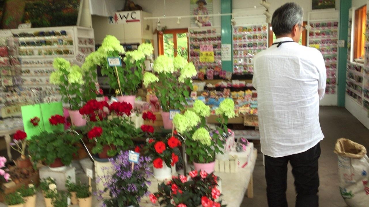北海道ガーデン街道2日目の 3_c0335145_16582446.jpg