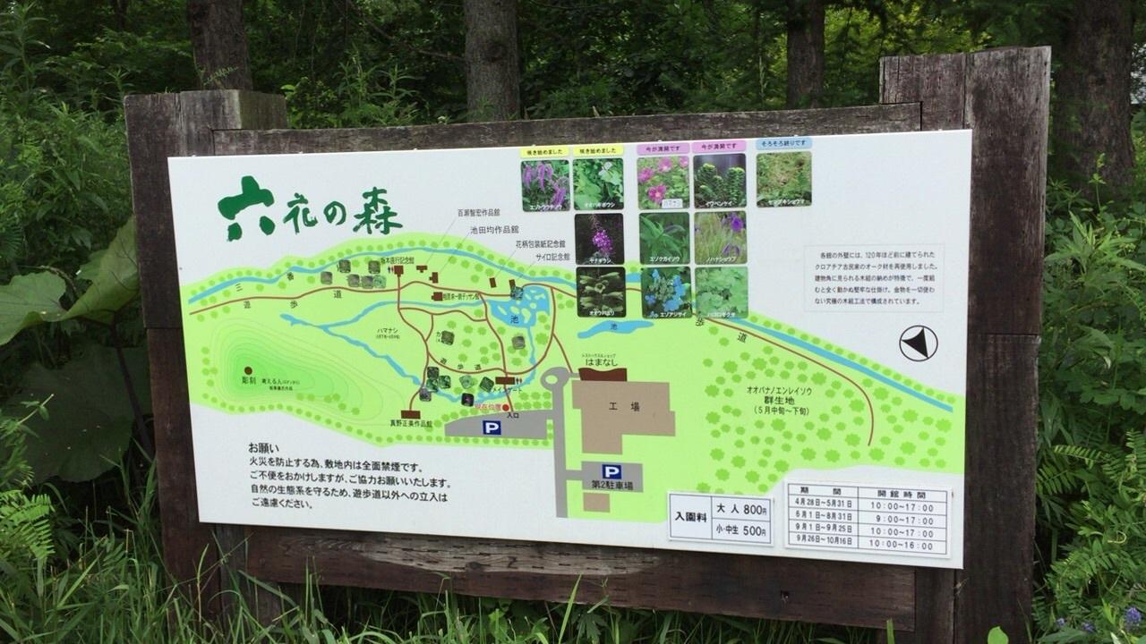北海道ガーデン街道2日目の 3_c0335145_17051903.jpg