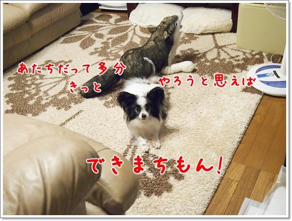 d0013149_00140316.jpg