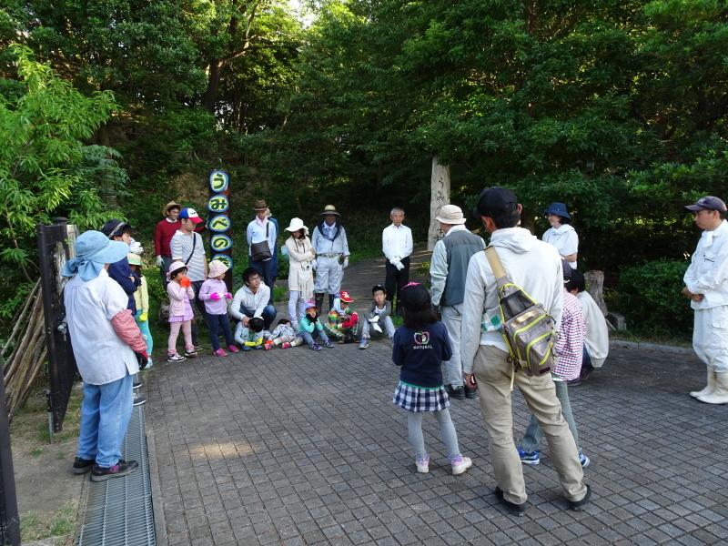 第2回「うみべの森でカブトムシを探そう!」_c0108460_00022504.jpg