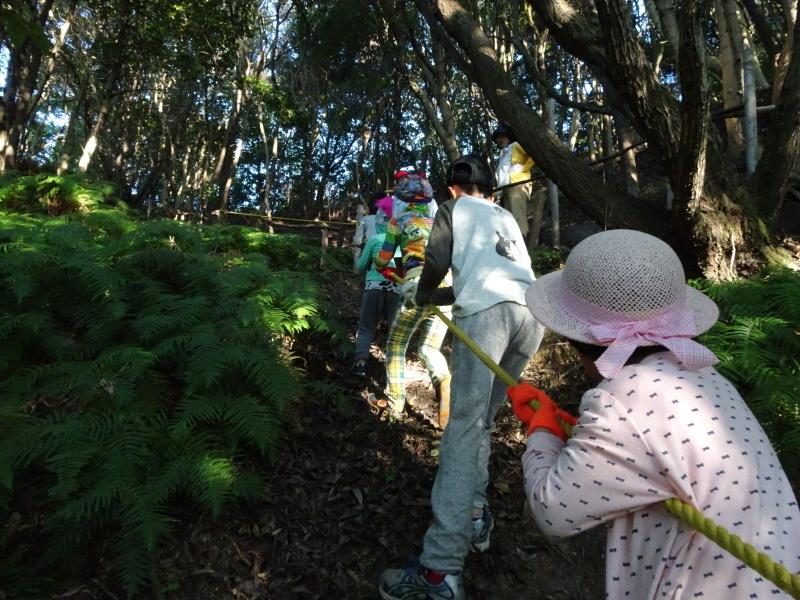 第2回「うみべの森でカブトムシを探そう!」_c0108460_00133671.jpg