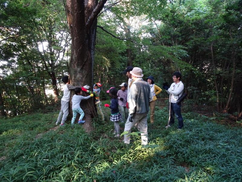 第2回「うみべの森でカブトムシを探そう!」_c0108460_00134129.jpg