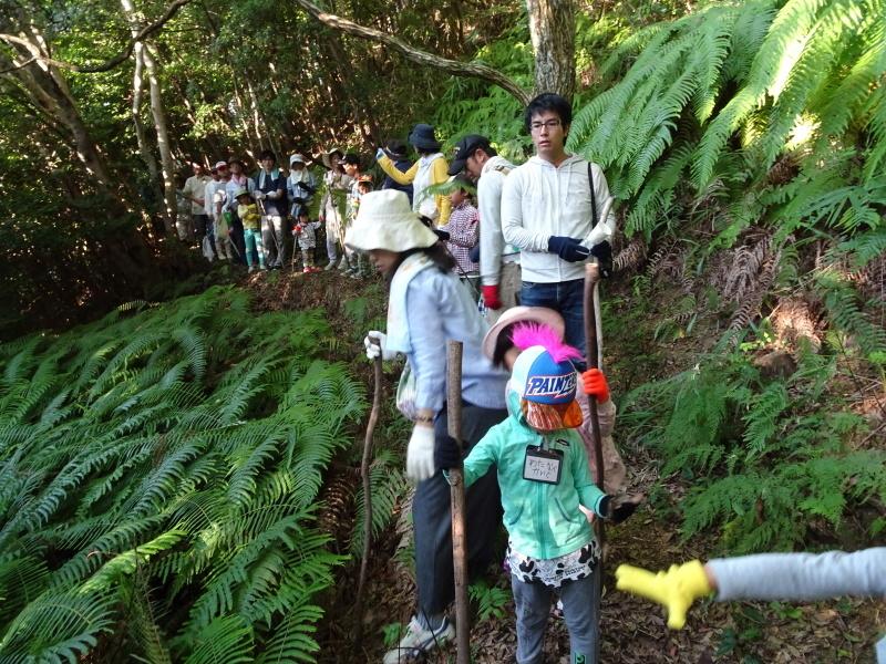 第2回「うみべの森でカブトムシを探そう!」_c0108460_00134303.jpg