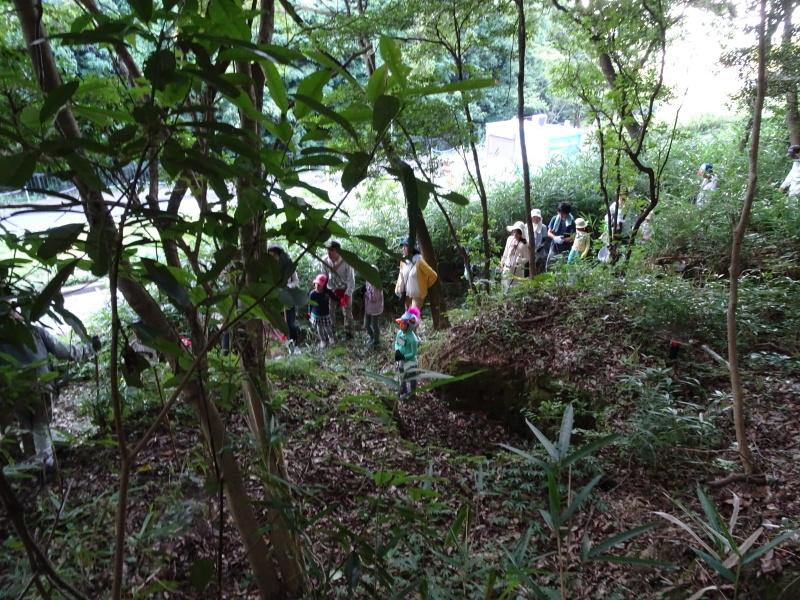 第2回「うみべの森でカブトムシを探そう!」_c0108460_00134790.jpg