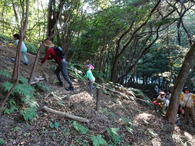 第2回「うみべの森でカブトムシを探そう!」_c0108460_00134988.jpg