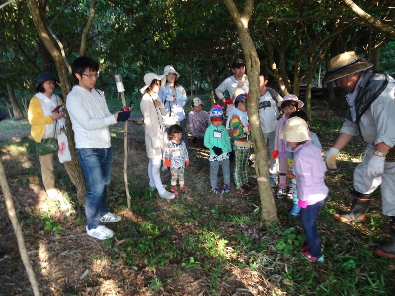 第2回「うみべの森でカブトムシを探そう!」_c0108460_00152766.jpg