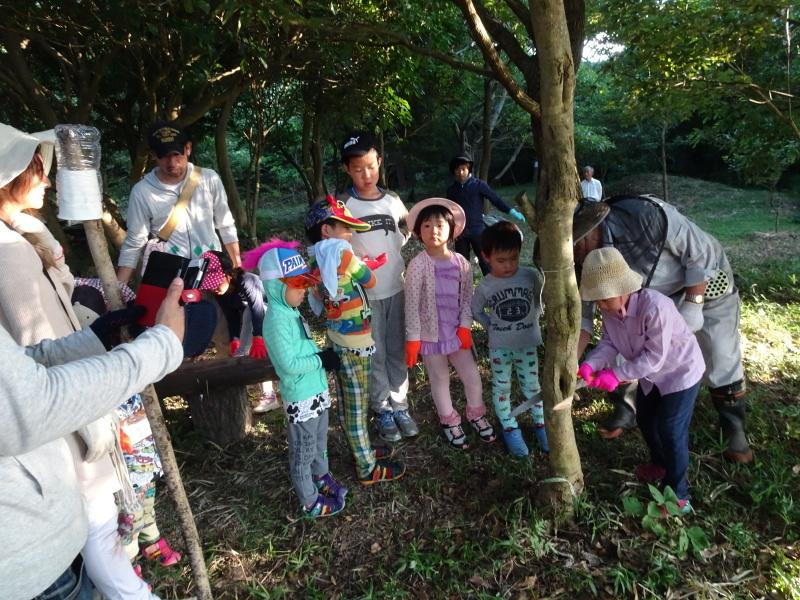 第2回「うみべの森でカブトムシを探そう!」_c0108460_00153358.jpg