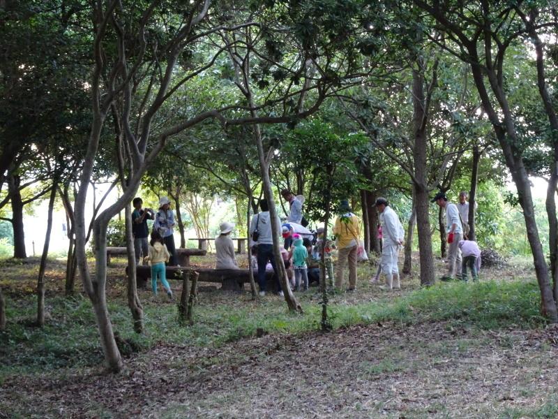 第2回「うみべの森でカブトムシを探そう!」_c0108460_00213465.jpg