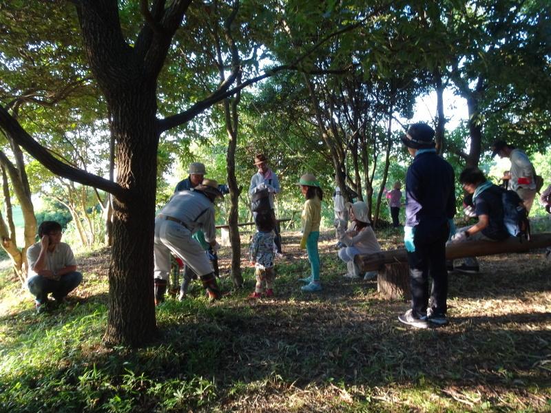 第2回「うみべの森でカブトムシを探そう!」_c0108460_00213619.jpg
