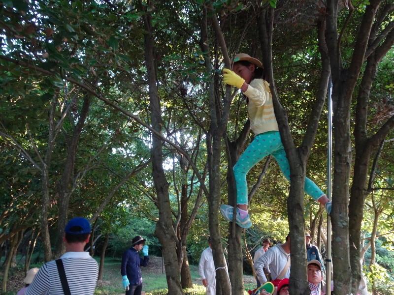 第2回「うみべの森でカブトムシを探そう!」_c0108460_00214292.jpg