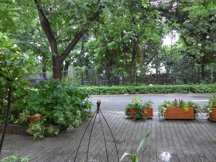 新宿御苑前「オリオール」へ行く。_f0232060_1624377.jpg