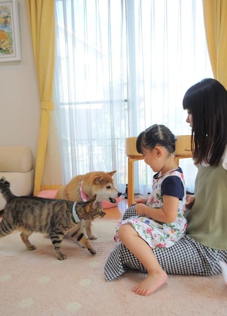 小さなモデルさん_a0126590_21464756.jpg