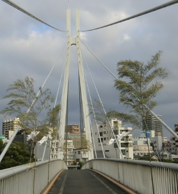夏のイベント 大阪城 天神祭り_b0176192_10431287.jpg