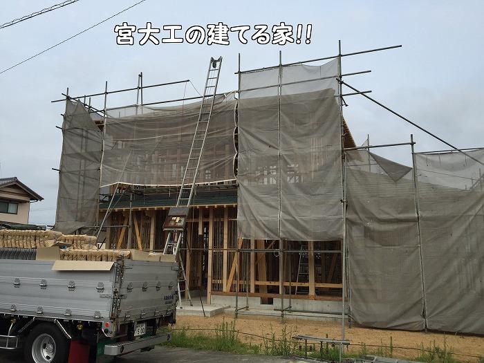b0168041_16243719.jpg