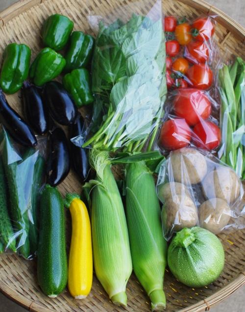 今週の野菜セット(7/26~7/30着)_c0110869_12444135.jpg
