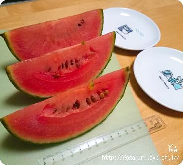 【写真】小玉スイカ 【独】Wassermelone 【英5再・最後の言葉】有言…_e0132084_735840.jpg