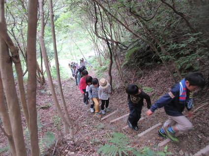 深日小・学童保育の子どもたち 孝子の森で遊ぶ  by  (ナベサダ)_f0053885_20491310.jpg