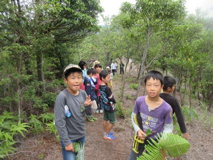 深日小・学童保育の子どもたち 孝子の森で遊ぶ  by  (ナベサダ)_f0053885_20495826.jpg