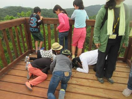 深日小・学童保育の子どもたち 孝子の森で遊ぶ  by  (ナベサダ)_f0053885_20521778.jpg