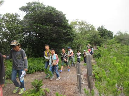 深日小・学童保育の子どもたち 孝子の森で遊ぶ  by  (ナベサダ)_f0053885_20534696.jpg