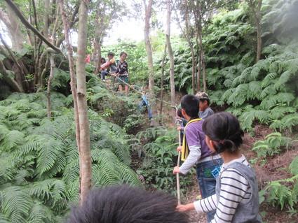 深日小・学童保育の子どもたち 孝子の森で遊ぶ  by  (ナベサダ)_f0053885_2054236.jpg