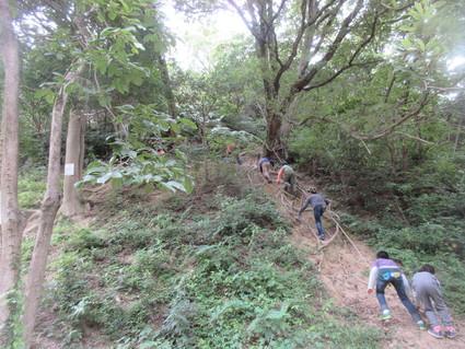 深日小・学童保育の子どもたち 孝子の森で遊ぶ  by  (ナベサダ)_f0053885_20583721.jpg