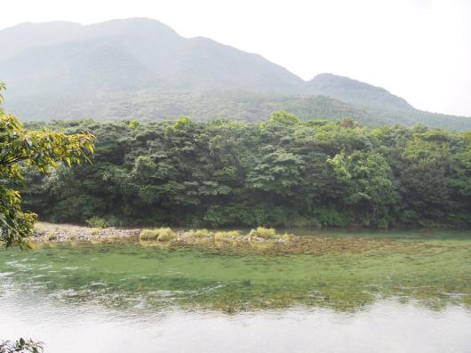 屋久島 ロッジ八重岳山荘_e0139694_22294010.jpg