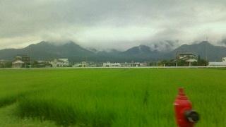 雨の日の田んぼ_c0289116_21341737.jpg