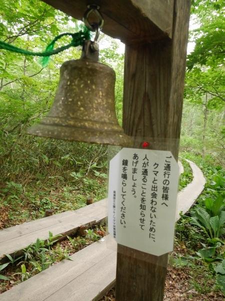 尾瀬 鳩待峠-山の鼻_a0351368_14401342.jpg