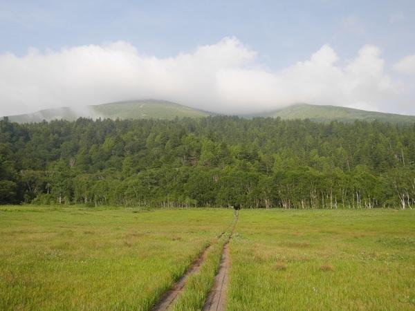 尾瀬 山の鼻ー至仏山へ_a0351368_16251433.jpg