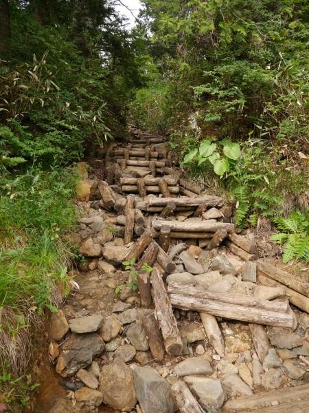 蛇紋岩と花の名山 至仏山_a0351368_22320875.jpg
