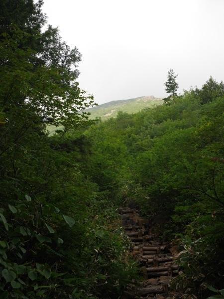 蛇紋岩と花の名山 至仏山_a0351368_22334260.jpg