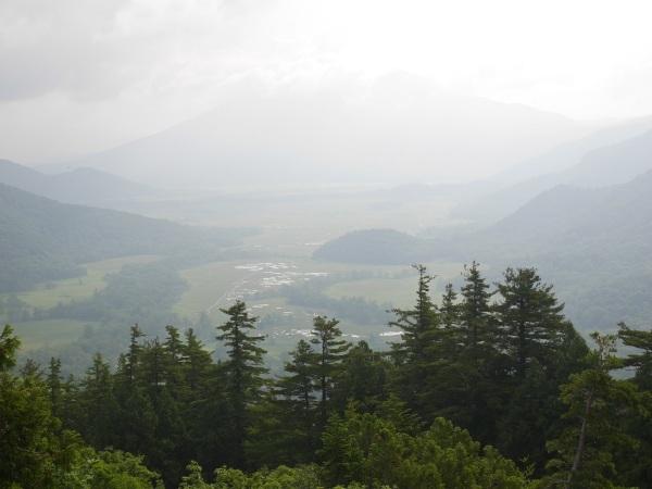 蛇紋岩と花の名山 至仏山_a0351368_22353913.jpg