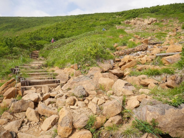 蛇紋岩と花の名山 至仏山_a0351368_22371982.jpg
