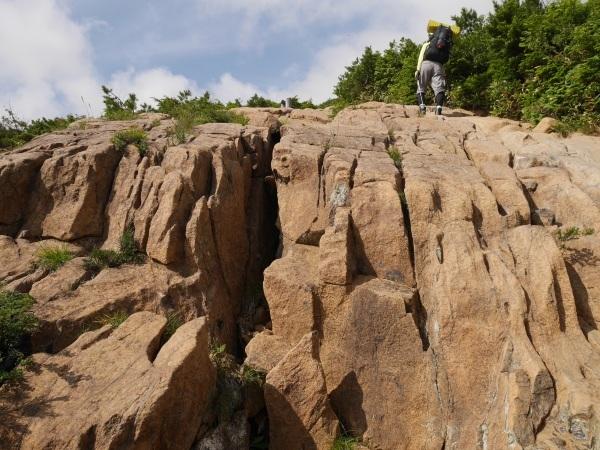 蛇紋岩と花の名山 至仏山_a0351368_22442727.jpg