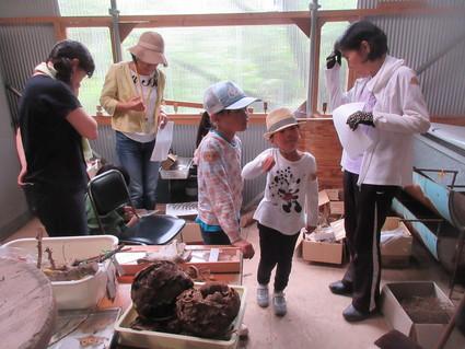 深日小・学童保育の子どもたち 孝子の森で遊ぶ  by  (ナベサダ)_f0053885_434542.jpg