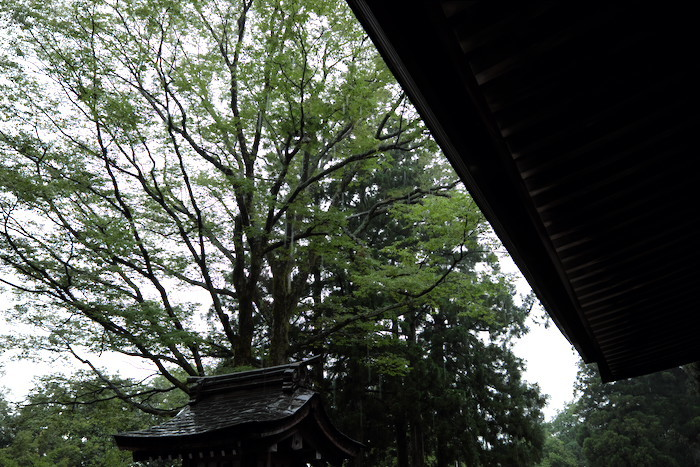 立山から金沢へ_b0339488_18253941.jpg