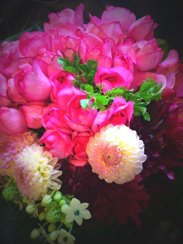 プロポーズの花束 その後 2_a0060141_11124233.jpg