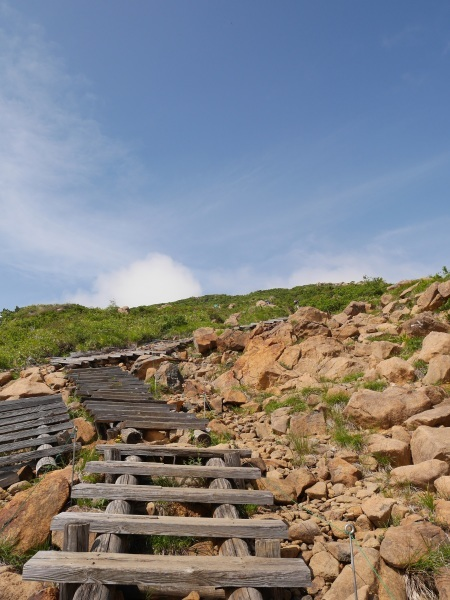 蛇紋岩と花の名山 至仏山_a0351368_21545165.jpg