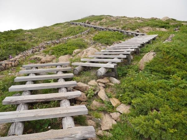 蛇紋岩と花の名山 至仏山_a0351368_21580515.jpg