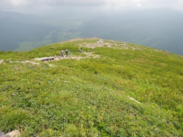 蛇紋岩と花の名山 至仏山_a0351368_21591901.jpg