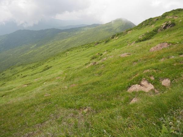 蛇紋岩と花の名山 至仏山_a0351368_21595788.jpg