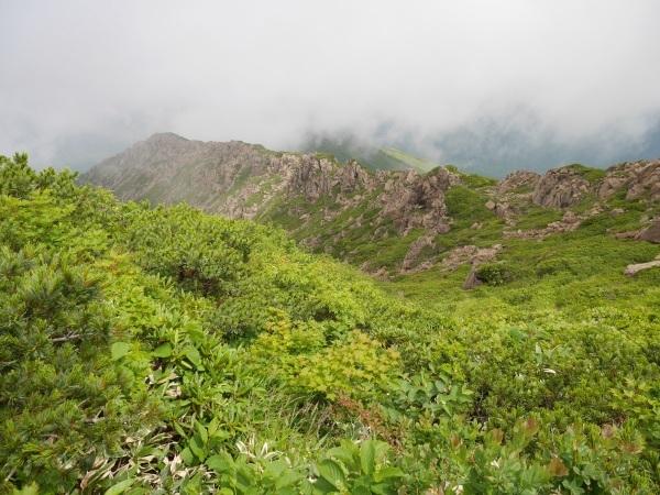蛇紋岩と花の名山 至仏山_a0351368_22003608.jpg