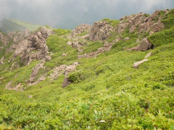 蛇紋岩と花の名山 至仏山_a0351368_22010630.jpg